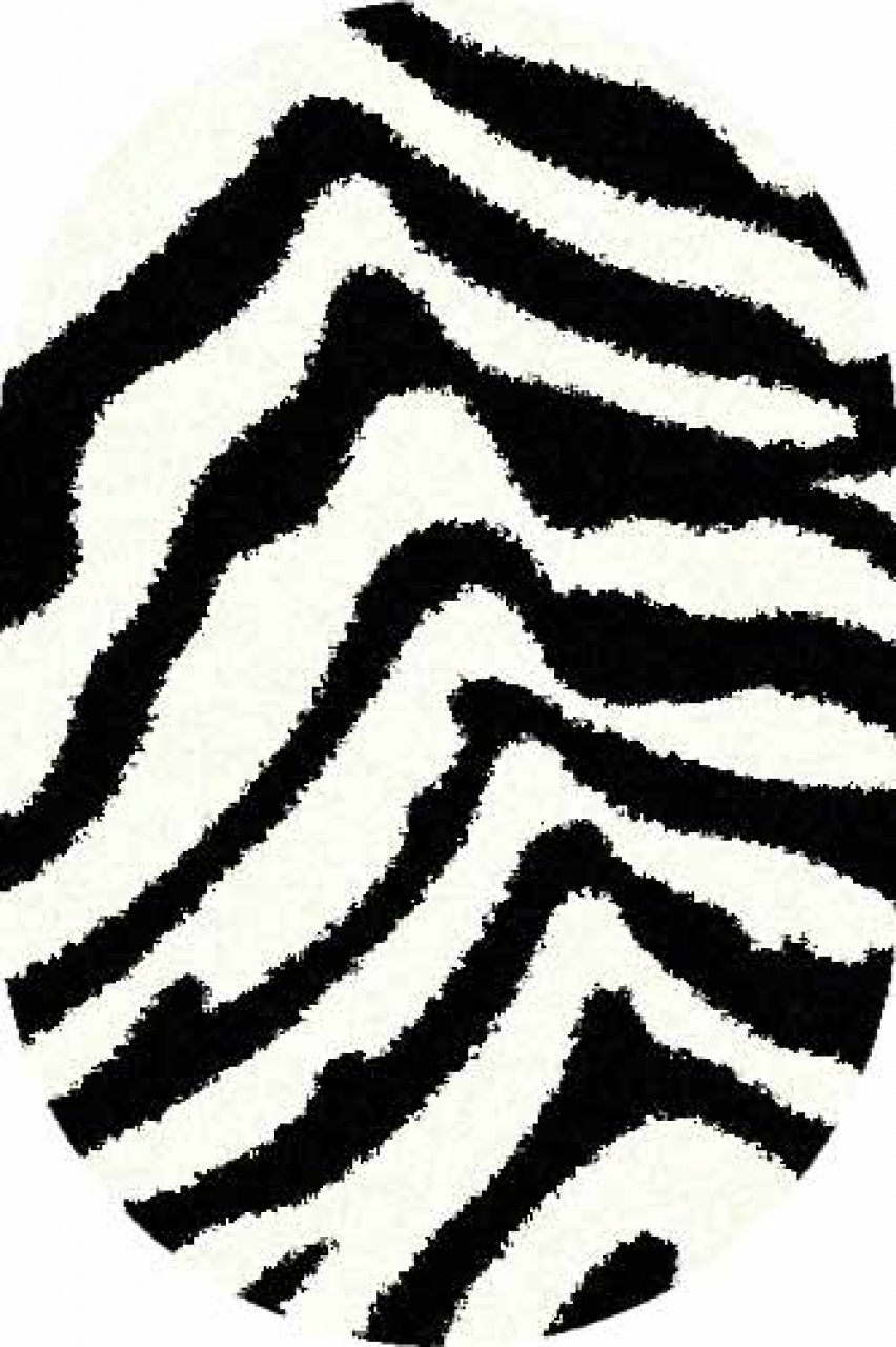 SHAGGY ULTRA - s604 - BONE-BLACK