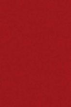 ADUM 2 - adum - RED