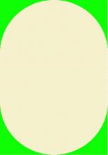 COSMIC SHAGGY - 5670 - 60