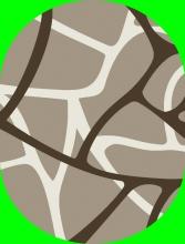 DIAMOND - P075 - 070