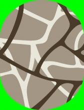 DIAMOND - P075 - 70