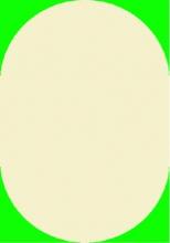 IPEK SHAGGY - 5670 - 60