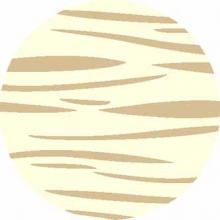 SHAGGY ULTRA - s608 - CREAM-BEIGE