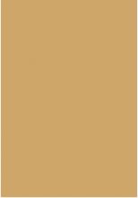 STAR_SHAGGY - 4489A - в дизайне