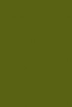 s600 - GREEN 2